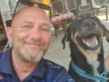Rescue Paws Thailand